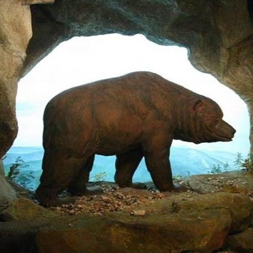 fête de l'ours dieulefit