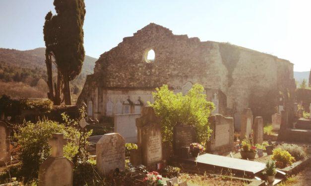 La taphophilie, lorsque les cimetières passionnent