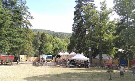 Bizz'Art 2021 : des rencontres professionnelles, pour des festivals plus éco-responsables